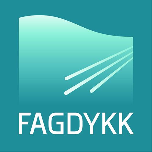 FAGDYKK AS